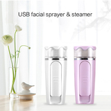 Facial Moisture sprayer